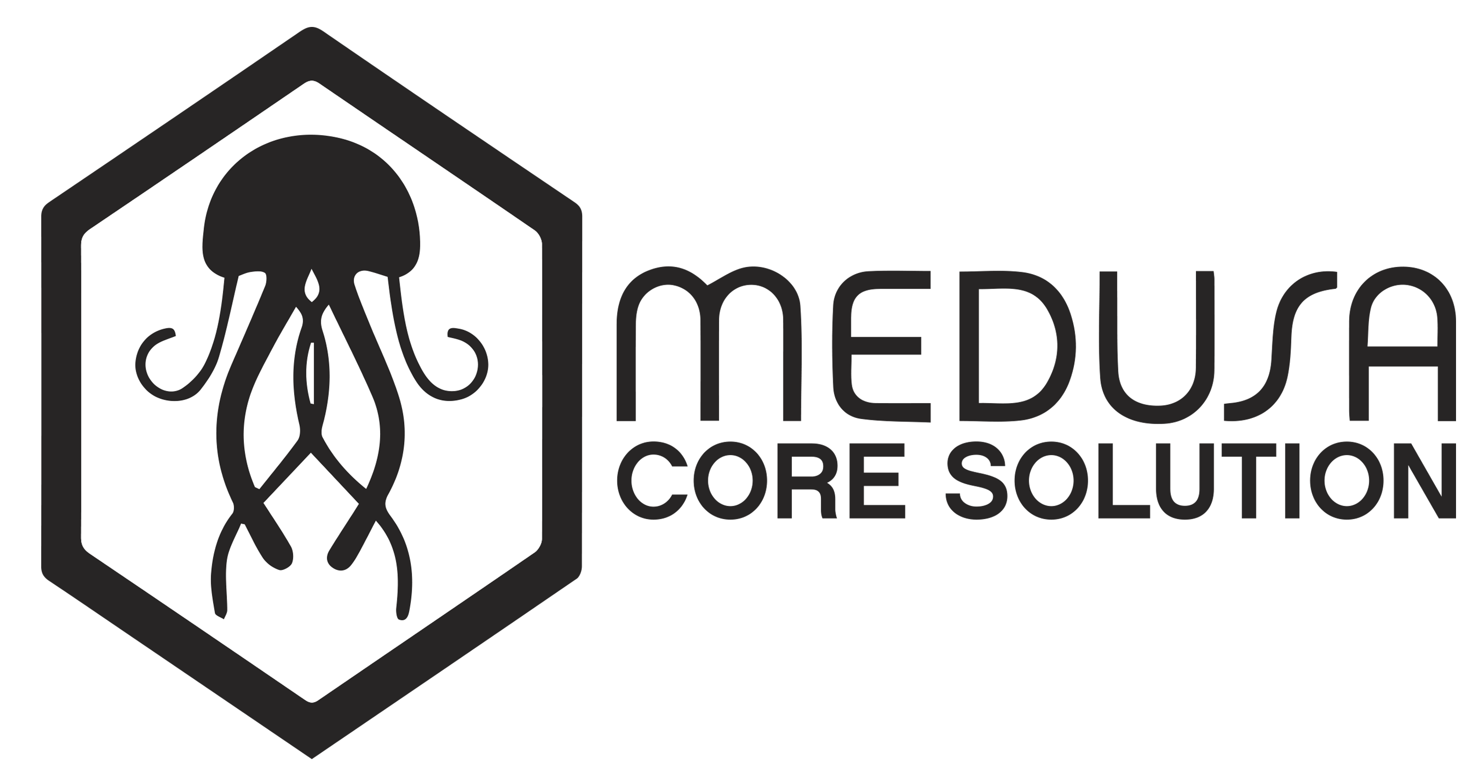 http://www.medusa-security.com